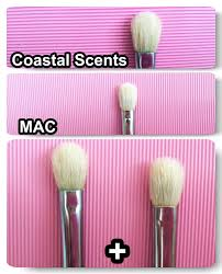 coastal scents brushes. mac 217, coastal scents pro fluff brush, eye shadow brush brushes