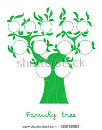 pedigree tree family tree chart stock images royalty free images vectors