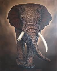 3d elephant wall art elephant