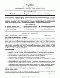 Typical Project Manager Resume Core Competencies Resume Examples