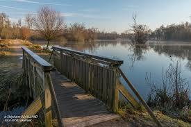 Le Parc de la Bouvaque (Abbeville) un petit matin brumeux d'hiver