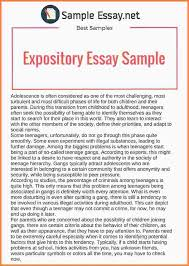 explanatory essay samples essay checklist 13 explanatory essay samples