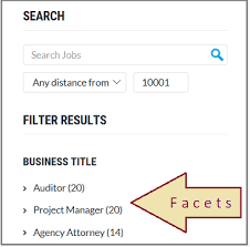 Whats A Facet Facet Filters For Search Navigation In Apps Azure Search