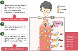 Insulin Resistance Food Chart The Relationship Between Blood Sugar Level And Gi Otsuka