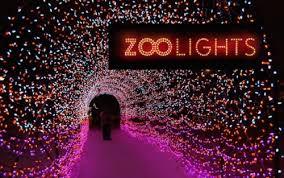 zoo lights. Exellent Zoo Zoo Lights In G