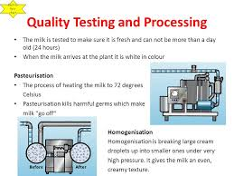The Process Of Milk Production Ppt Video Online Download