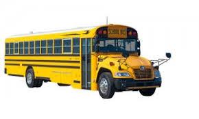 Blue Bird Vision Cardinal Bus Sales