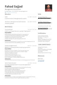 Financial Analyst Resume Enchanting Financial Analyst Resume Samples VisualCV Resume Samples Database