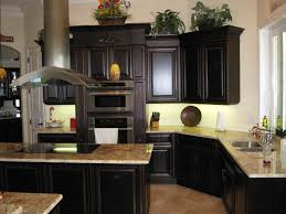 kitchen ideas white cabinets black appliances. Kitchen Designs With Black Appliances Unique White Ceiling Light Modern Brown Cabinets Fake Wood Flooring Idea In Ideas