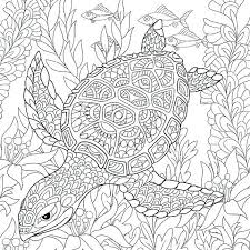 Coloring Pages Stress Relief Coloring Books Butterflies Book Adult