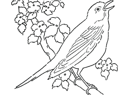 Bird Coloring Sheet Angry Birds Coloring Sheets Angry Bird Coloring