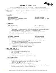 Resume For Free Free Resume Application Form Noxdefense Com