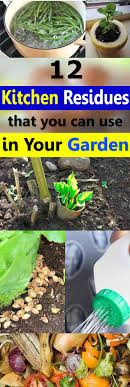 Kitchen Scrap Gardening 12 Kitchen Residues Leftovers That You Can Use In Your Garden