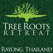 <b>Tree Roots</b> Retreat / M³ - Home | Facebook