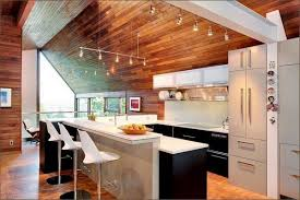 the advantages of wood ceiling in contemporary home interior design