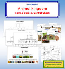 What Are The Animal Kingdoms Chart Animal Kingdom Charts And Cards