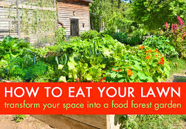 Small Picture How to Eat Your Lawn Transform Your Wasteful Grassy Space into a