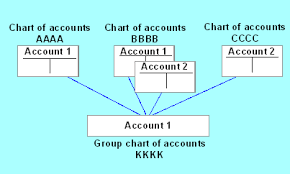 Financial Statement Versions With Group Account Numbers Sap