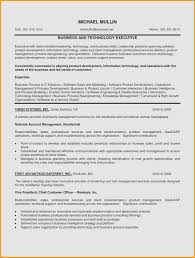 Summary Examples For Resume Free Executive Summary For Resume