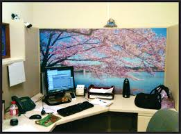 office cubicle accessories. Awesome Cubicle Accessories Fun Pretty A Color Scheme For Your Decor With Office C