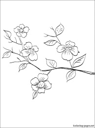 Small Picture Coloring Page Tree With Fruit Coloring Pages