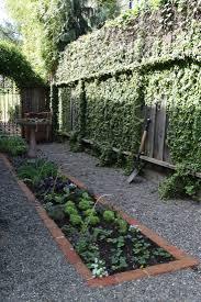 edible garden with the home depot gardenista