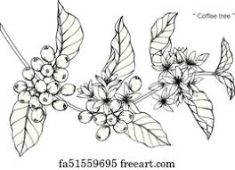 Only 2 available and it's in 1 person's cart. Free Coffee Plant Art Prints And Wall Artwork Freeart