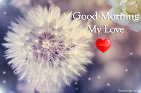 have amazing good morning my love