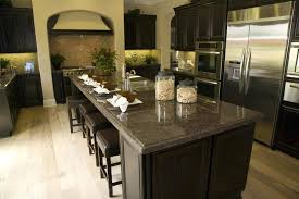 Dark Kitchen Cabinets With Light Granite Classy Light Granite Countertops With Dark Cabinets Hotelmotel