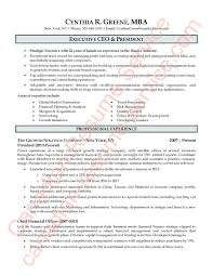 Ceo Resume Examples Magnificent Exectutive CEO President Resume Sample 48 Of 48 Executive Resume