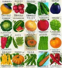 garden seed companies. Garden Seed Companies E