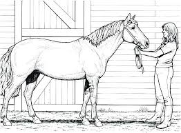 Paint Horse Coloring Pages To Print Kids Horses Sheets And Rider