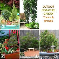 fairy garden miniatures. Learn How To Choose The Best Plants For Your Outdoor Miniature Garden. Fairy Garden Miniatures