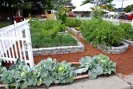Small Picture small backyard veggie garden free small vegetable garden plans