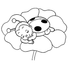 The ladybug sleeping ladybug coloring pages free printables momjunction on ladybug coloring pages printable