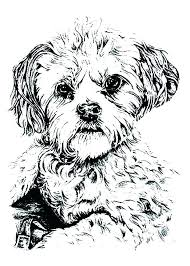 Puppy Dog Pals Bob Coloring Pages Dog Coloring Pages To Print Cute