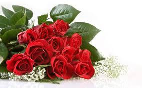 Wallpaper Bunga Rose Happy Marriage Anniversary Gift