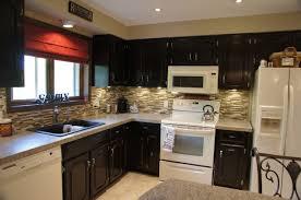 Dark Stained Kitchen Cabinets Staining Kitchen Cabinets Black Design Porter