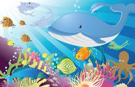 Resultado de imagen para animales del oceano para niños