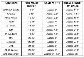 Dog Diaper Size Chart Sizechart Pets Belly Bands For Dogs Dogs Dog Items