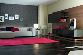 Pink Rugs For Living Room Decoration Cute Pink Rug Mixed With Modern Black Wall Unit Also