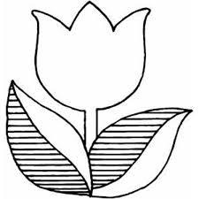 Small Picture Ideas Collection Tulip Coloring Pages To Print About Summary