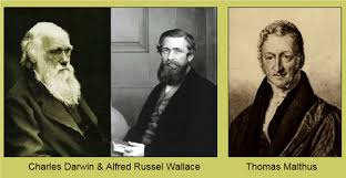 theory of evolution development history of evolutionary theory  pictures of charles darwin alfred russel wallace and thomas malthus