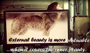 External Beauty Quotes Best of Share Top Quotes External Beauty Is More Valuable When It Covers