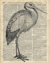 bird digital art storkwild bird vine ink ilration over old book page by anna w