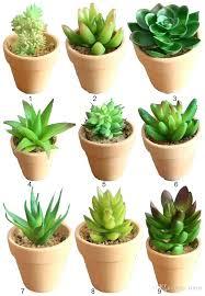 Superb Decorative Ceramic Pots Old Decorative Ceramic Pots Stock Photo Decorative Ceramic  Pots Shop