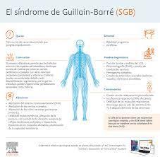 Síndrome de Guillain-Barré: síntomas y ...