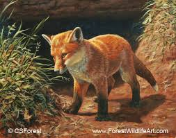 Small Picture Forest Wildlife Art Coloring Book Page Red Fox Pup