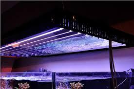 oziris lighting seeks to breathe new life into t5 aquarium fixtures news reef builders the reef and marine aquarium blog