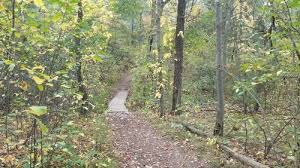 Best trails in Beaver Brook Reservation, Massachusetts | AllTrails